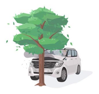 car hitting tree